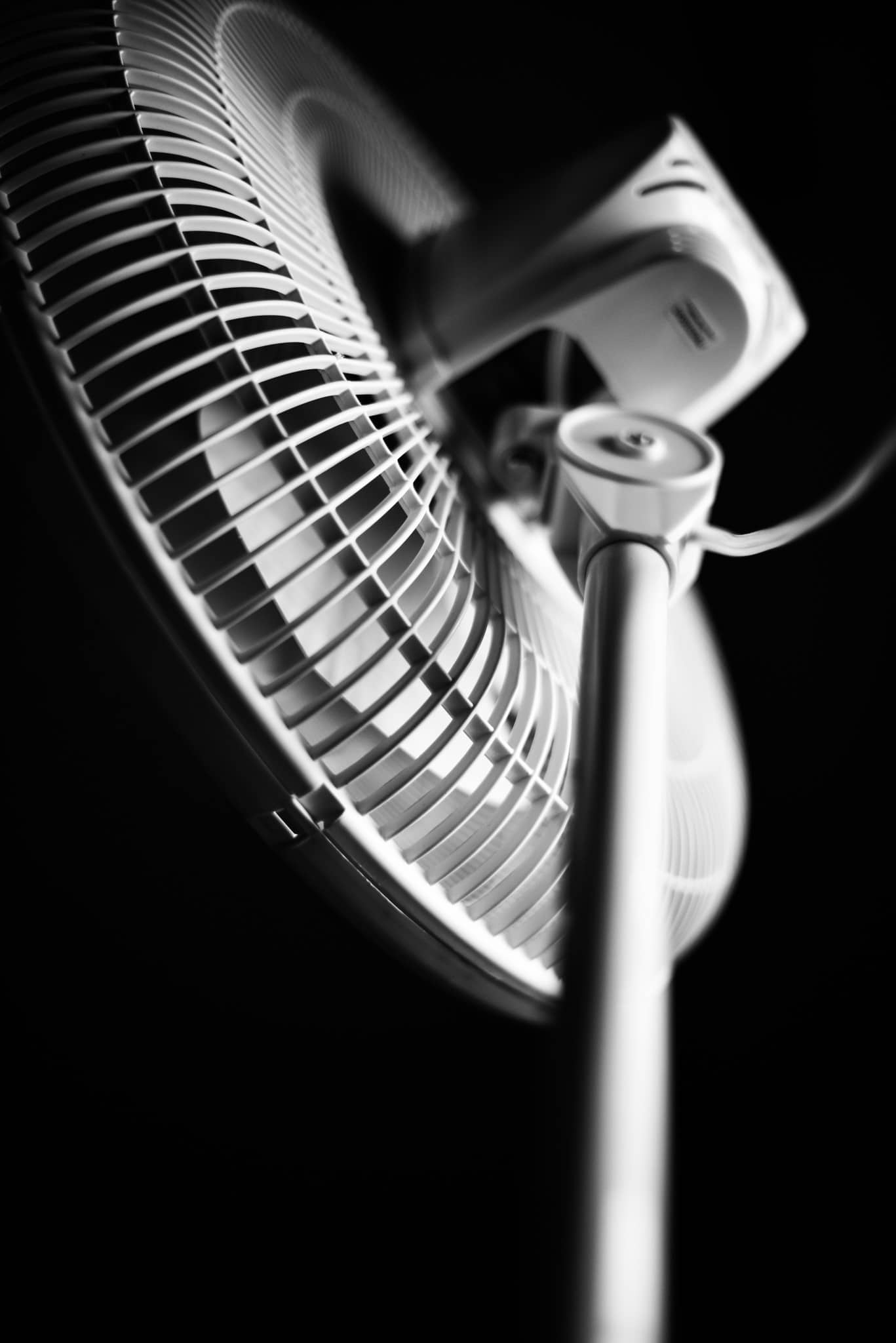 Best Oscillating Fan Reviews First Rate Fans